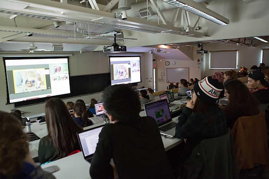 Large Lecture Consortium
