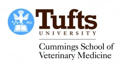 Image result for The Cummings School of Veterinary Medicine at Tufts University